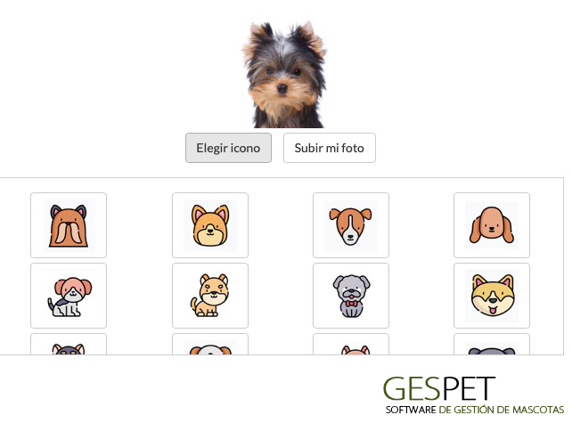 ficha de animal software razas perros y gatos
