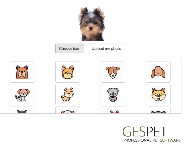 animal file software pet business photo breed