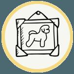 美容狗 app